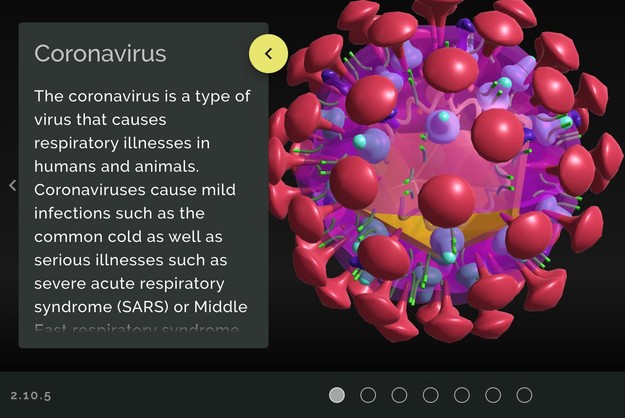 captura de pantalla del modelo 3D del Coronavirus de Gale Formulario