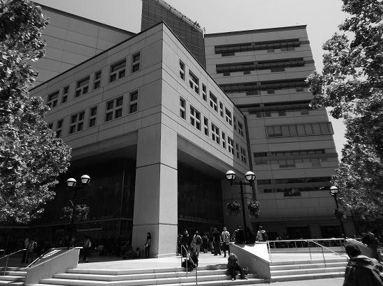 Foto: Dr. Martin Luther King, Jr. Biblioteca, San Jose Public Library, Main Branch, mayo de 2015. Edificio y gente esperando afuera. Este es un edificio moderno adyacente al campus de la Universidad Estatal de San José. Foto de Traci Engel.