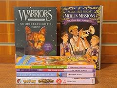 pila de libros de la serie infantil