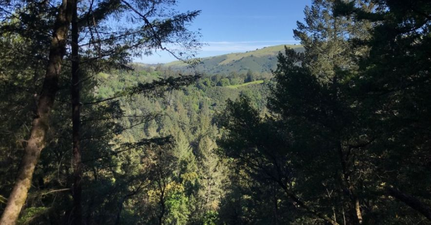 South Grizzly Flat Trail overlook