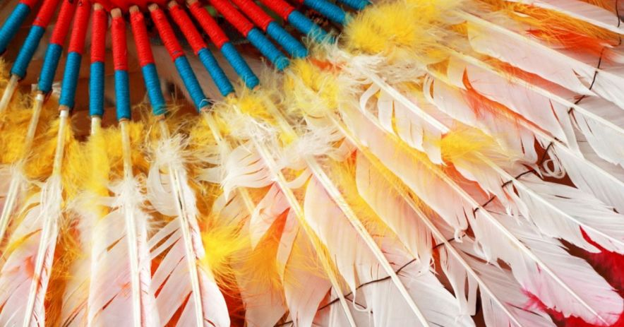 Southwest Native American feathers