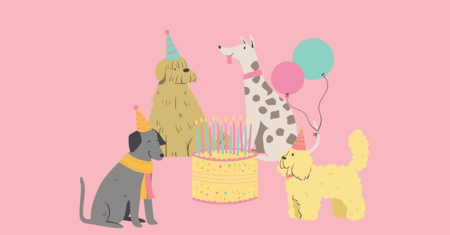 dogs wearing party hats with a light pink background