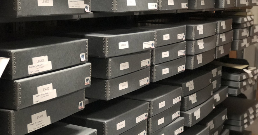 Archival boxes with labels on shelfs