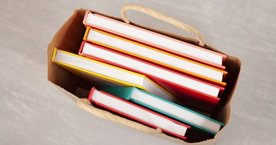 Colorful books sitting in a brown paper shopping bag.