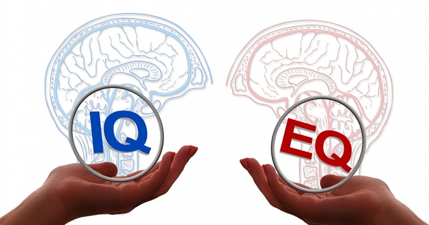 Two hands each hold a brain:  one saying IQ and the other EQ