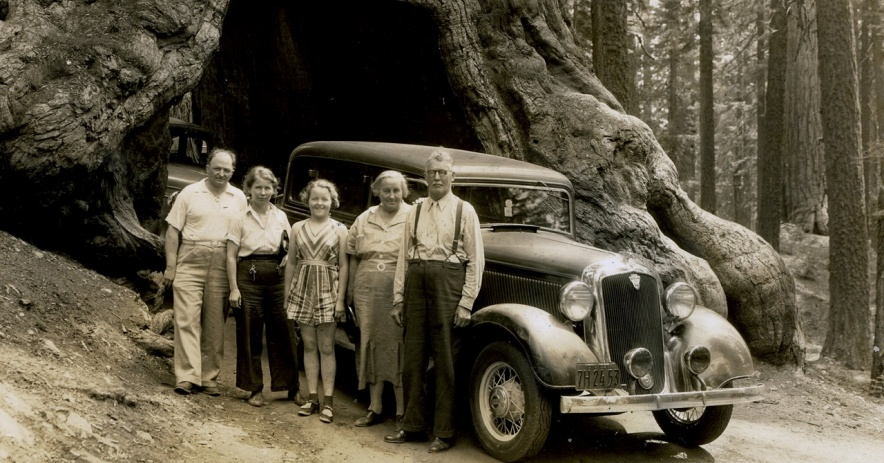 Imagen: William C. Allen con su esposa y otros miembros de la familia posan bajo el árbol Wawona de Yosemite en 1938. Colección de Ralph Pearce