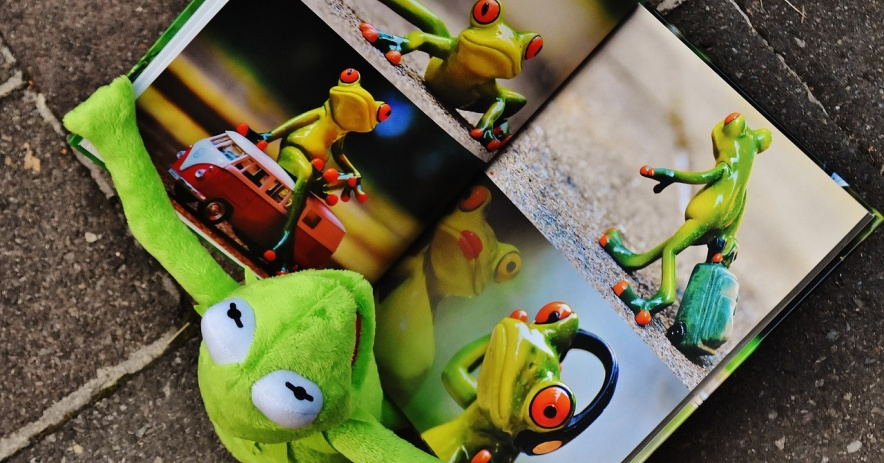 Kermit reads a picture book about frogs.