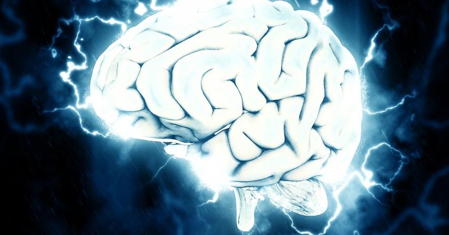 Texto alternativo: impulsos eléctricos alrededor del cerebro.