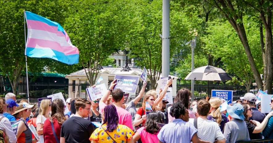 A photograph of a crowd of people standing in a park. The Transgender Pride Flag is flown and flapping in the breeze.