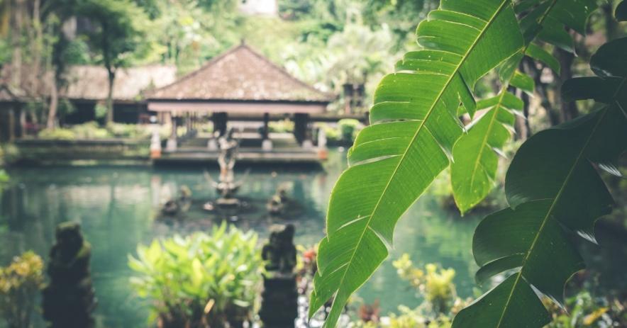 Pagoda junto a un estanque y jardín.
