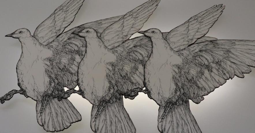 Líneas de luz y muro de pájaros en vuelo