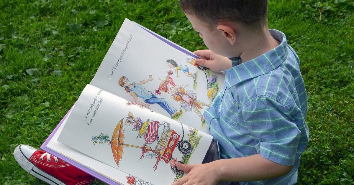 男孩在草地上閱讀簡·奧康納(Jane O'Connor)的《花式南希》和Posh Puppy。