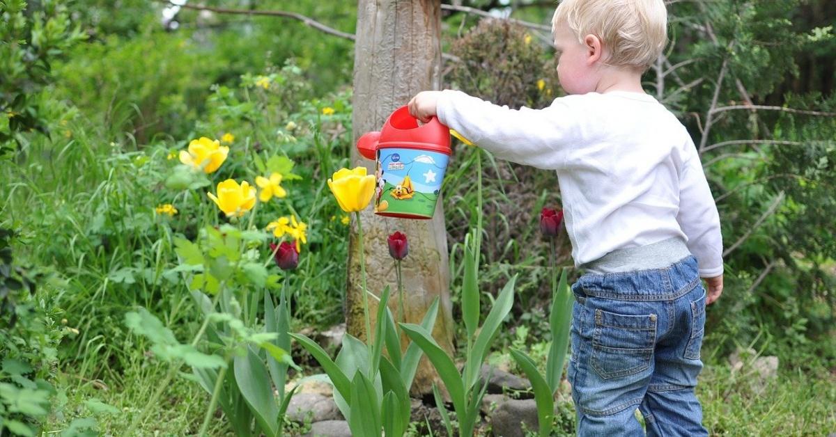 Niño pequeño y rubio con una regadera de plástico regando flores.